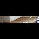 ROCKFON - ROCKFON Tropic® Stone Wool Ceiling Tiles
