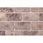 The Belden Brick Company - Alamo Clear Bricks