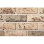 The Belden Brick Company - Beechwood Blend Bricks