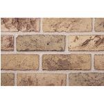 The Belden Brick Company - Alamo Blend Bricks