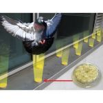 Bird Barrier America, Inc. - Optical Gel™ Multi-Sensory Bird Repellent