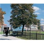 Master Halco, Inc. - Monumental Iron Works Ornamental Fence and Gates