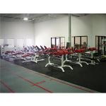 Dynamic Sports Construction, Inc - DynaFit™ Commercial Rubber Fitness Flooring