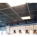 Acoustical Surfaces, Inc. - SQUARELINE™ Acoustical Metal Ceiling Tiles