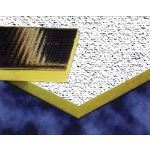 Acoustical Surfaces, Inc. - Noise S.T.O.P.™ Sound Barrier Acoustical Ceiling Tiles