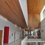 Acoustical Surfaces, Inc. - Linear Wood Ceiling and Wall System