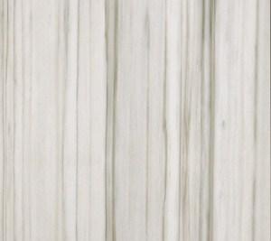 Porcelain Tile - Zebrino CG Marmoker - Polished