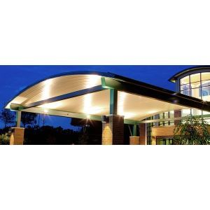 epic metals archdeck curved roof deck ceiling systems - Curved Roof