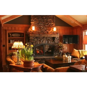 Acucraft fireplace systems products construction for Wood burning fireplace construction