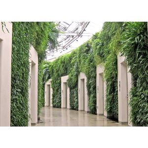 Gsky Plant Systems Inc Pro Wall Exterior Living Green