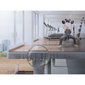 Schoeck_Bole_composite_gym_2021_Cropped.jpg image