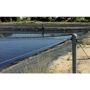 Industrial Pond Netting – Bird-B-Gone, Inc  - Sweets