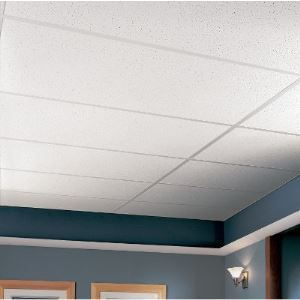 Fine Fissured 1729 Acoustical Ceiling Tile Armstrong
