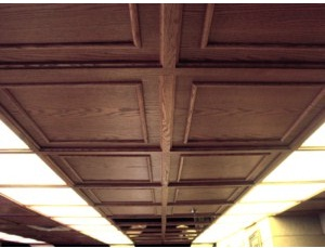 Old World™ Classic Wood Ceiling System
